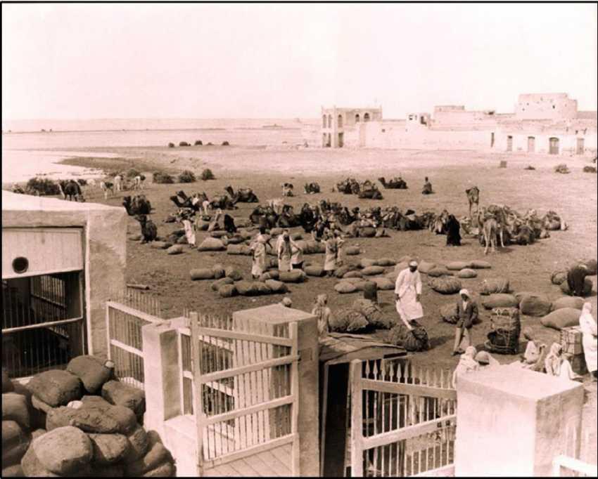 العُقَيْر.. ميناء التثاقف الموسيقي .. بحثاً عن الرصيد المسجل